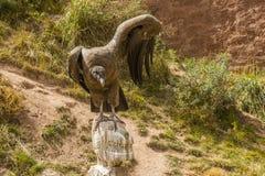 Fördelande vingar för Andean kondor Arkivbild