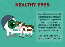 Fördelar av mejeriprodukter för synförmåga Royaltyfri Bild