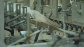 Förderband der faltenden Maschine stock video