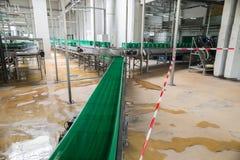 Förderband mit leeren Plastiksätzen in einer Brauerei Stockbild
