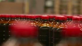 Förderer an der Brauerei für die Produktion von Kwasslimonaden- und -biergetränken stock video