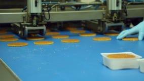 Förderer für die Produktion von Plätzchen an der Süßigkeitenfabrik stock footage
