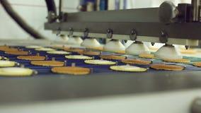 Förderer für die Produktion von Plätzchen an der Süßigkeitenfabrik stock video