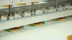 Förderer für die Produktion von Plätzchen an der Süßigkeitenfabrik stock video footage