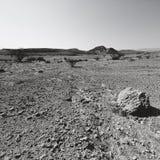 Fördjupning och tomhet i svartvitt royaltyfria foton