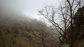 fördunkla berg Arkivbilder