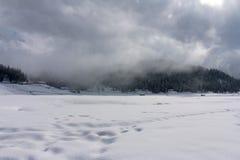 Fördunkla dolda berg och träd i Gulmarg, Kashmir Royaltyfria Foton