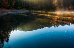 Fördunkla löneförhöjningen från skogsjön nära pir Royaltyfri Fotografi