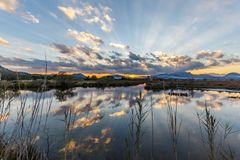 Fördunkla reflexioner och ljusa strålar i Albufereta våtmarker Royaltyfri Fotografi