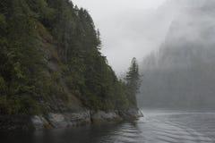 Fördunkla rullningen in i en fjord Arkivbild