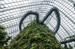 Fördunkla skogkupolen på trädgården vid fjärden Royaltyfri Foto
