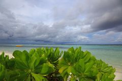 Fördunklar den övre sikten för det härliga slutet för den gröna växten med turkosvatten av det indiska havet och blå himmel med v Royaltyfria Foton