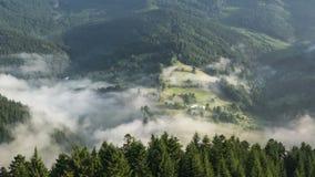 Fördunklar den dimmiga morgonen för mystiker ovanför mist över träd Forest Countryside Time Lapse stock video