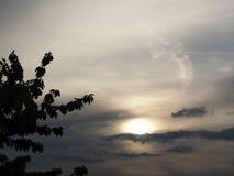 Fördunklar draken i himlen royaltyfri bild