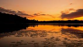 Före soluppgång på ö sjön Orangeville Royaltyfria Bilder