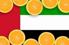 Förenade Arabemiraten flagga i citrusfruktskivahorisontalram arkivfoto