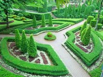 Föreningspunkt tre i engelsk trädgård Royaltyfria Foton