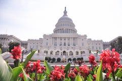 Förenta staternaKapitolium - Washington DC Royaltyfri Fotografi