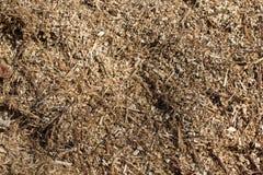 Sawdust arkivbilder
