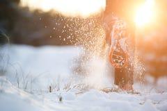 Föreställa bakifrån den körande mannen i gymnastikskor på snöig skog Arkivbild