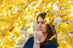 Föreställd ung tonårs- flicka under ett träd med ett gult blad i höst Royaltyfri Foto