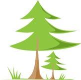 föreställer den gröna naturen för bakgrund white för säsongfjädertree Royaltyfri Foto