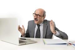 Företags stående av den skalliga lyckliga affärsmannen för 60-tal som ler confid arkivbilder