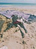Förfölja i stranden royaltyfria foton