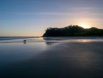 Förfölja på stranden Arkivbild