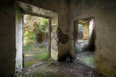förfall för betong 01 Royaltyfri Foto