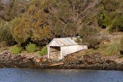 Förfallet fartygskjul på den Tasmanian kusten Royaltyfria Bilder