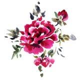 författare blommar vattenfärg för I-målningsbild Arkivfoto