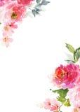 författarekortet blommar hälsning som jag föreställer vattenfärg Royaltyfri Foto