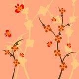 Förgrena sig av en växt Arkivfoto