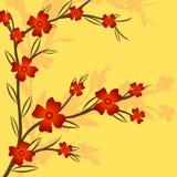 Förgrena sig av en växt royaltyfri illustrationer