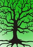 Förgrena sig av tree royaltyfri bild