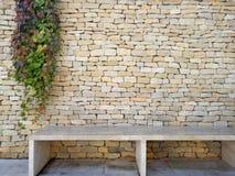 Förgrena sig den dekorativa växten på tegelstenväggen Gräsplan förgrena sig på textur för stenvägg Fotografering för Bildbyråer