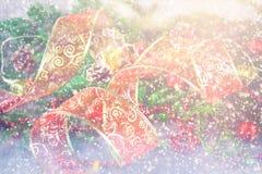Förgrena sig det dekorativa bandet för röd jul från organza som omges av gran Arkivfoto