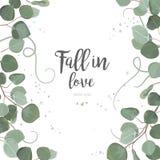 Förgrena sig lämnar eukalyptussilverdollargräsplan, lövverk, gräns, stock illustrationer