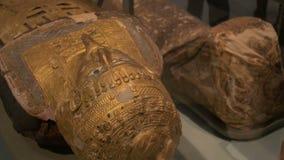Förgylld egyptisk mammamaskering arkivfilmer