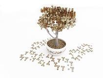 förgyllda pengar framför treen Royaltyfria Foton