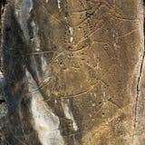 """Förhistorisk Coa-flod†""""vaggar gravyrer royaltyfria bilder"""
