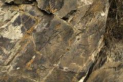 """Förhistorisk Coa-flod†""""vaggar gravyrer royaltyfria foton"""