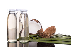 Förkylning - pressande extra jungfrulig kokosnötolja i flaskor med kokosnötter royaltyfria foton