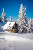 Förlägga i barack i träden för snö och för snöig vit i bakgrunden Royaltyfri Fotografi