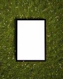 Förlöjliga upp affischen på gräset, bakgrund Royaltyfria Foton