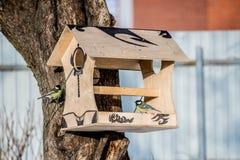 Förlagematare för fåglar fotografering för bildbyråer