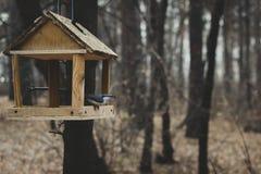 Förlagematare för fåglar royaltyfri bild