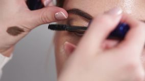 Förlagen använder svart mascara på kvinnans ögon som utför smink stock video