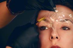 Förlagen gör ögonbryn Ögonbrynlamination Flickan gör ögonbryn i salongen Härlig ögonbrynform Yrkesmässigt ögonbryn fotografering för bildbyråer
